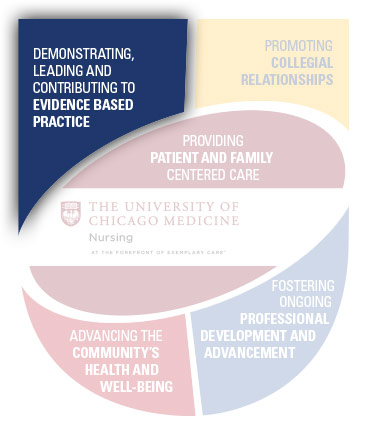 Demonstrating, Leading and Contributing to Evidence Based Practice