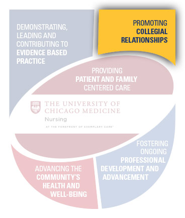 Promoting Collegial Relationships