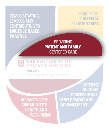 Providing Patient and Family Centered Care copy